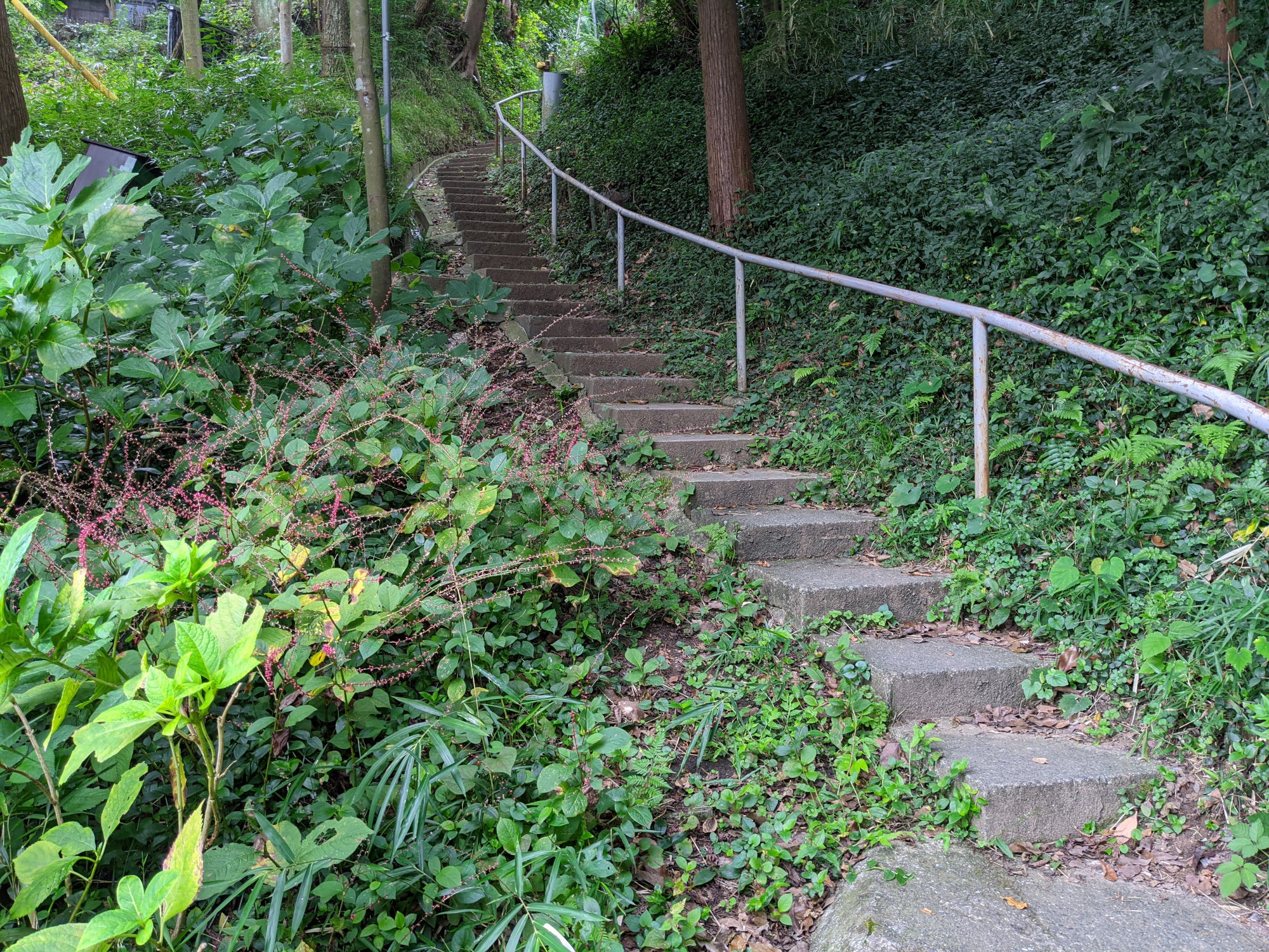 ADDress鎌倉B邸へのルート